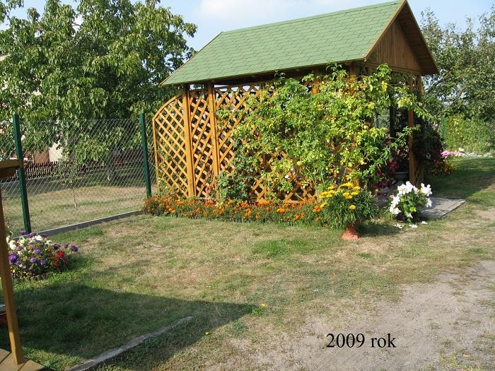 2009r.jpg