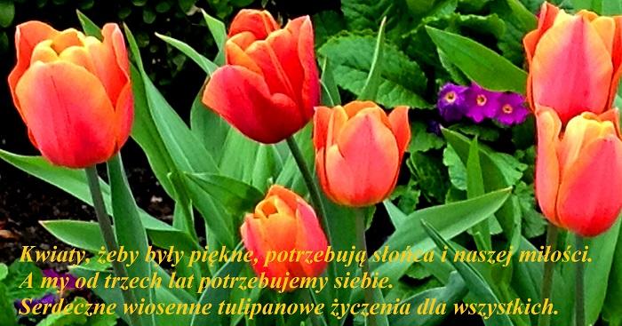 2014-04-22058.jpg