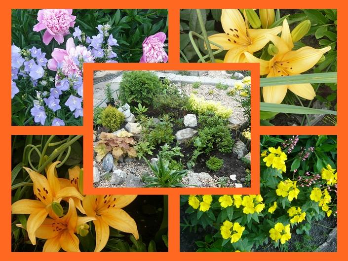 kwiaty.jpg