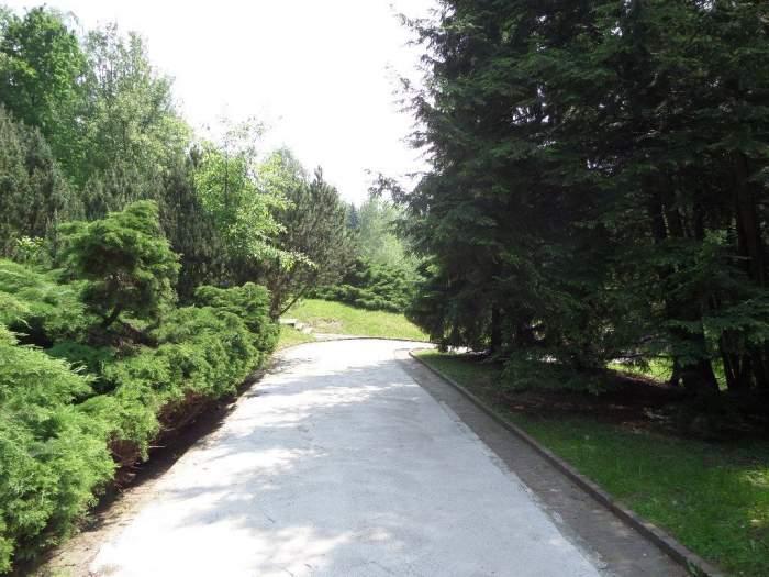 park099.jpg