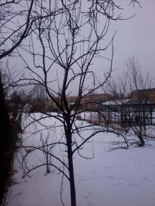 2013-02-1813.20.47.jpg