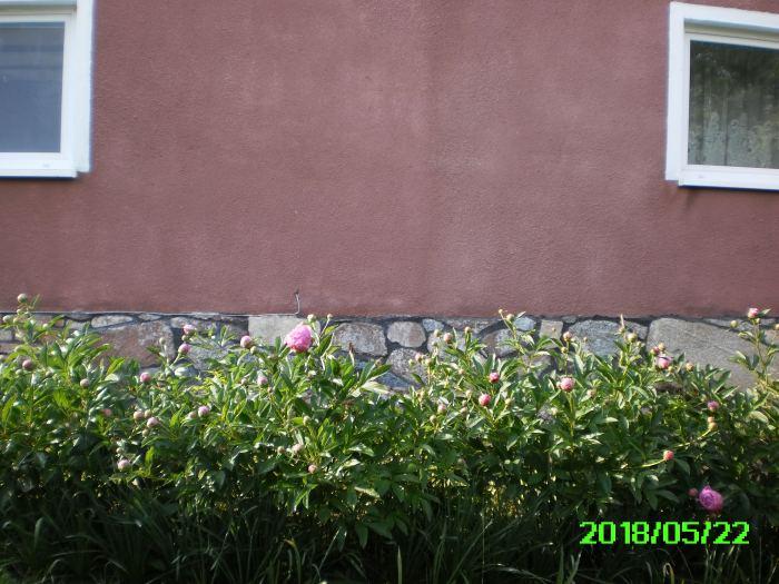 PICT0004-6.jpg