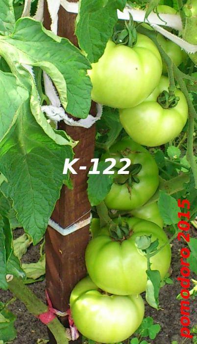 DSC_4415-3.jpg