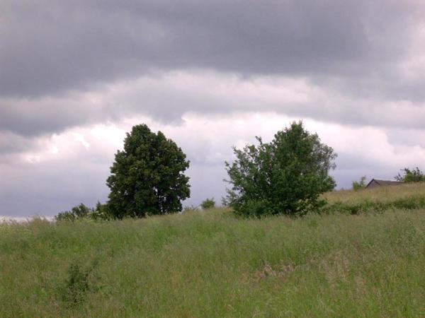 14-15VI2008035.jpg
