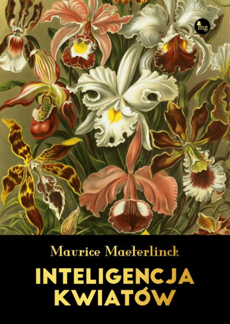 Inteligencja-kwiatow.png