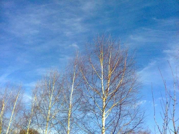 niebo1.jpg