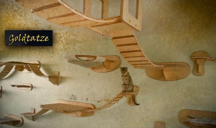 cattree5.jpg
