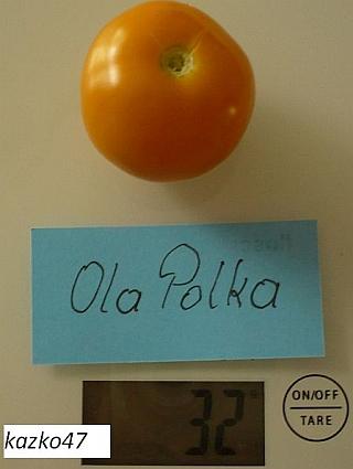 OlaPolka1-2.jpg
