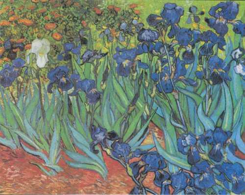 Van_Gogh_-_Iris_Schwertlilien.jpg