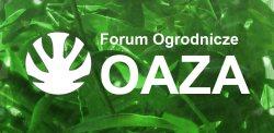 Forum oaza