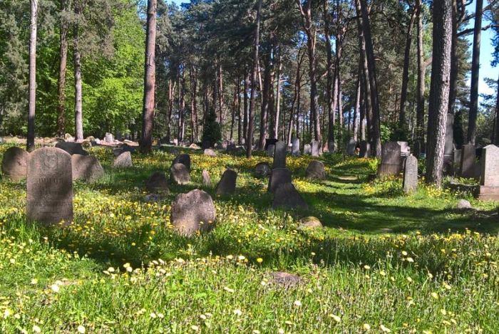 cmentarz-tatarski-kruszyniany.jpg