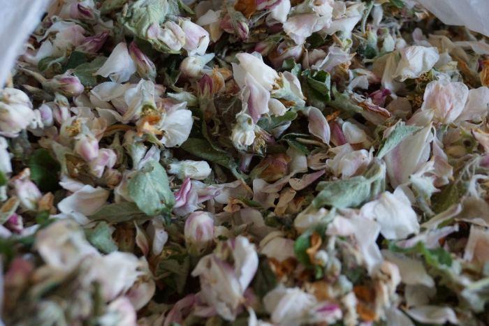 kwiaty-jabloni-herbata.jpg