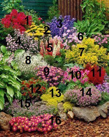 kwiaty-napisy.jpg