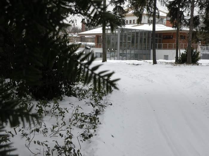 ogrod-botaniczny-centrum-dydaktyczne.jpg