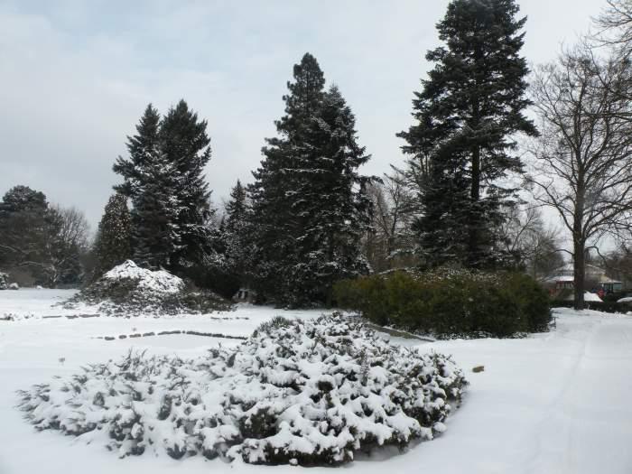 ogrod-botaniczny1.jpg