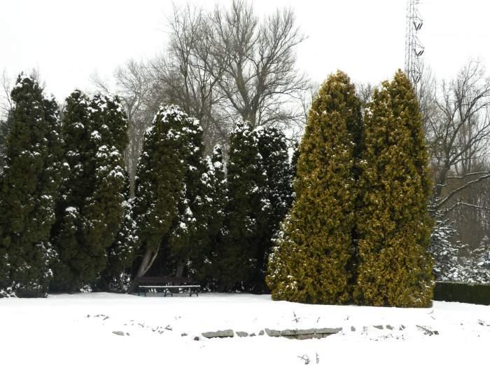 ogrod-botaniczny16.jpg