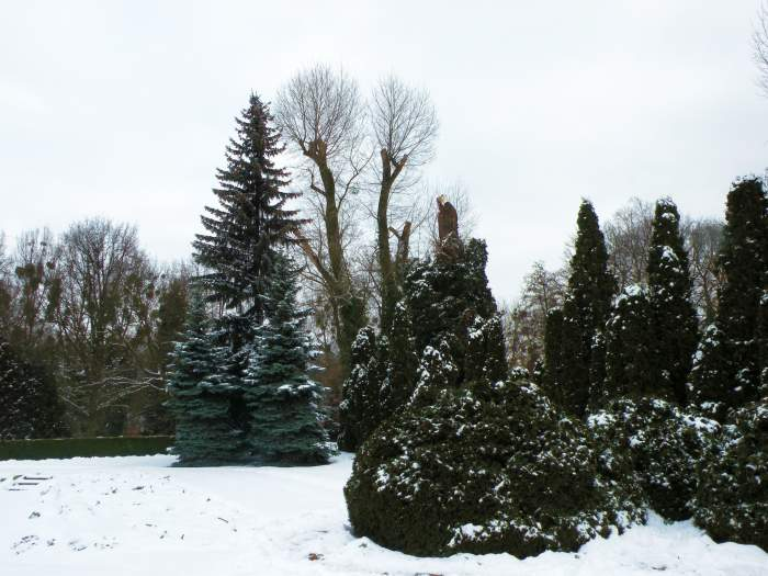 ogrod-botaniczny18.jpg
