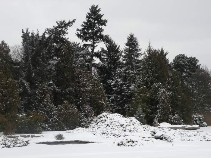 ogrod-botaniczny2.jpg