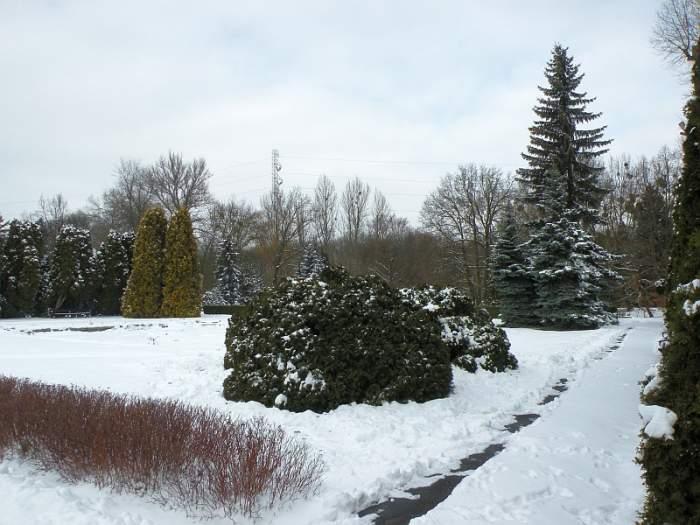 ogrod-botaniczny20.jpg