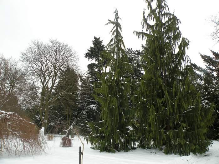 ogrod-botaniczny5.jpg