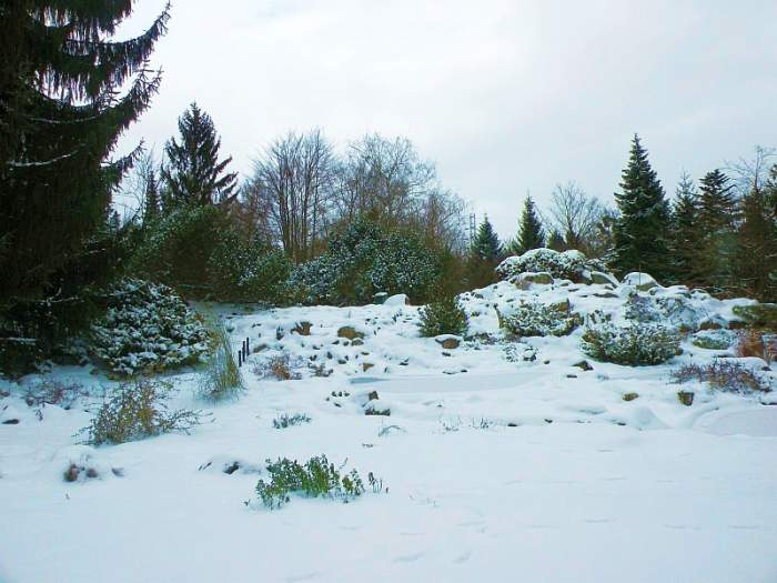 ogrod-botaniczny7.jpg