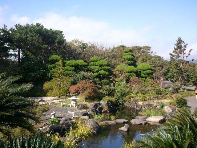 ogrod-japonski-widok-ogolny.jpg