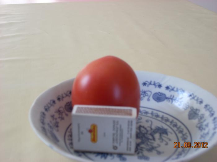 pomidorywrzesie2012035.jpg