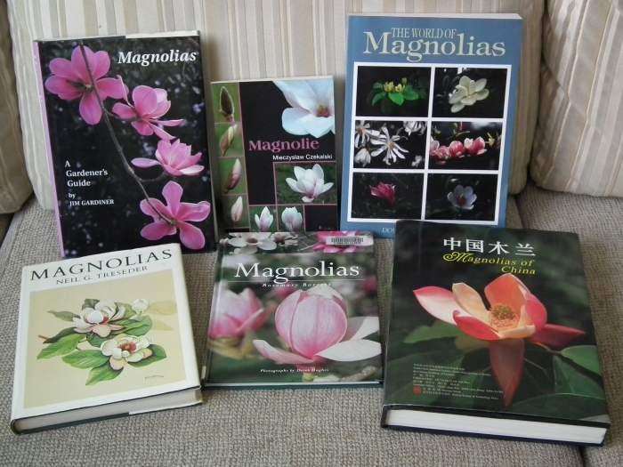 magnoliabooks2013a002.jpg