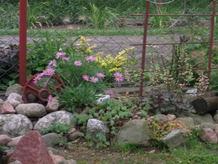 DSCF0068_2012-11-08.jpg