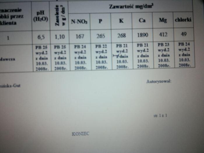 analizagleby006-2.jpg