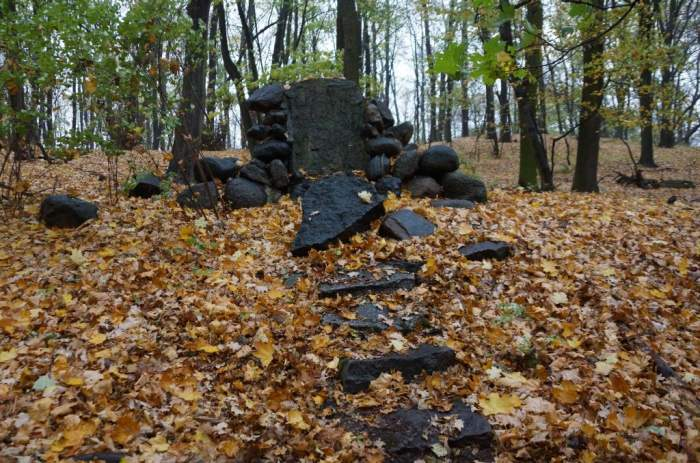 radojewo-jesien2.jpg