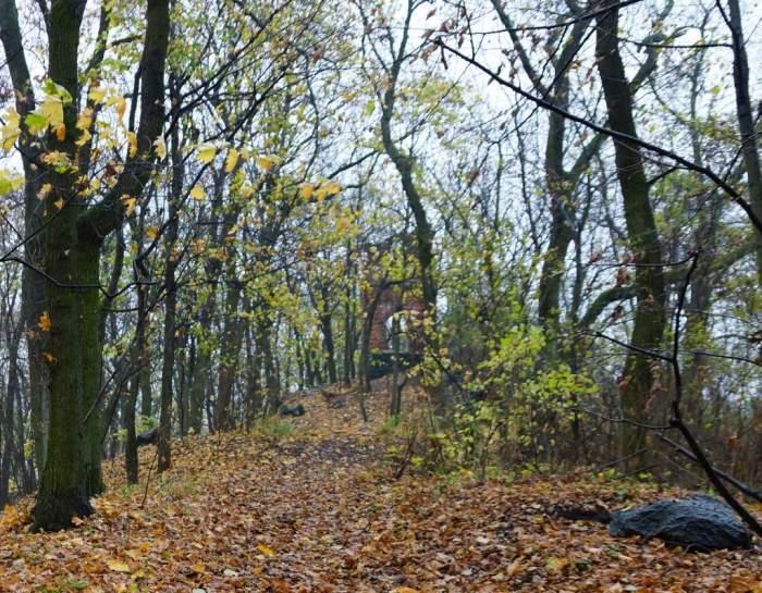 radojewo-ruina-jesien1.jpg