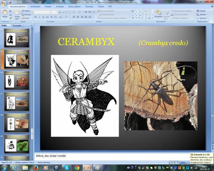 Cerambyx.jpg