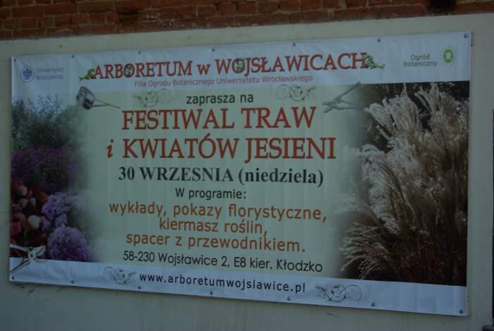 wojsawicefestiwaltraw2012018.JPG