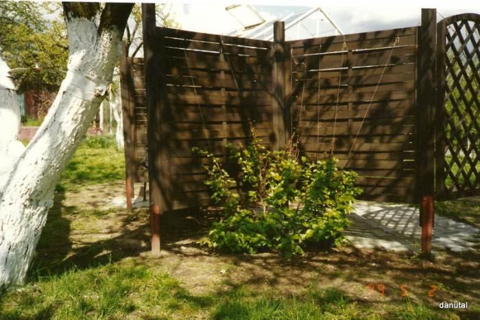 1999-05-020001.jpg