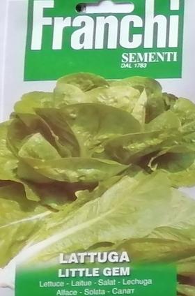 salatarzymskaLittleGem.png
