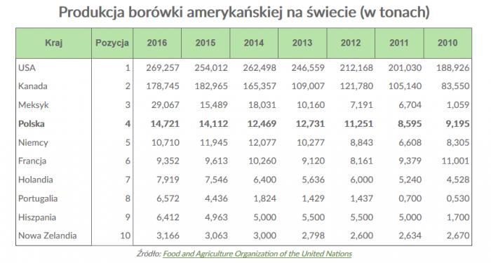 produkcja-borowki-amerykanskiej-na-swiecie.png
