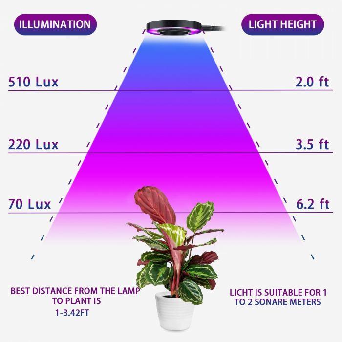 lampa24W.jpg