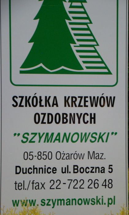 DSC07133-2.jpg